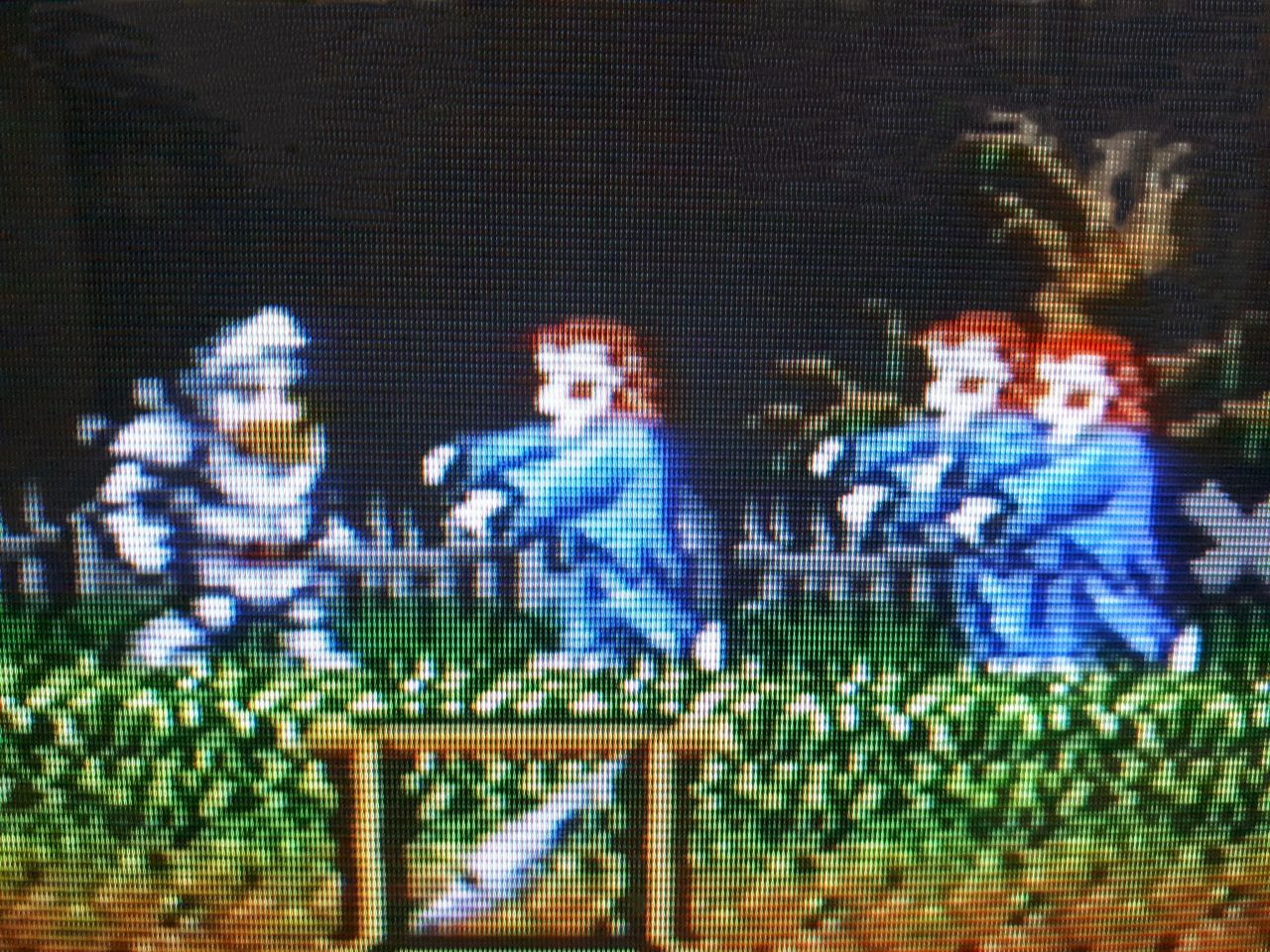 Ghosts 'n Goblins CRT close up